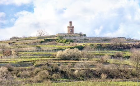 Tower in the vineyards photo