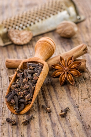 clove of clove: Spice scoop with cloves, star anise and cinnamon sticks Stock Photo