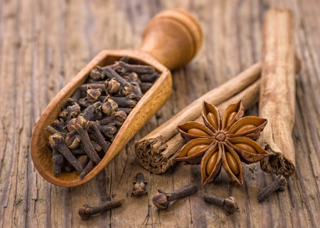 Spice scoop with cloves, star anise and cinnamon sticks photo
