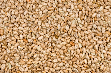 common bean: Background with pinto beans