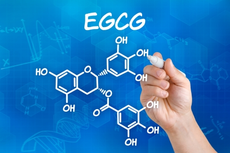 sclerosis: Hand with pen drawing the chemical formula of EGCG Stock Photo