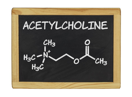 acetylcholine: chemical formula of acetylcholine on a blackboard
