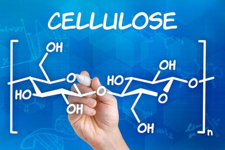 celulosa: Mano con la pluma de dibujo de la fórmula química de la celulosa