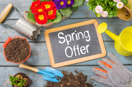 Blackboard on a plant table with garden tools - Spring offer photo