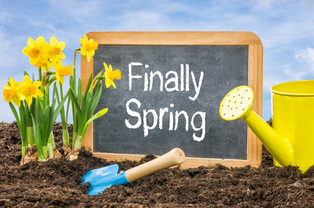 finally: Sign in the flower bed with the text Finally Spring Stock Photo