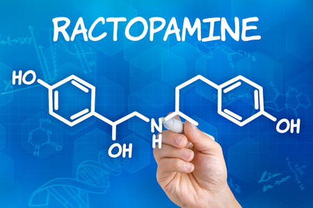 chemical formula: Hand with pen drawing the chemical formula of Ractopamine Stock Photo