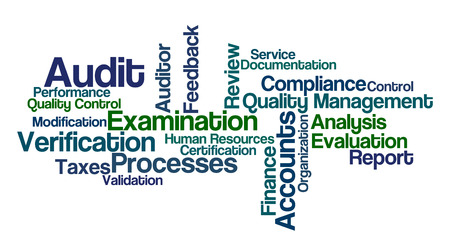 verification and validation: Word Cloud - Audit