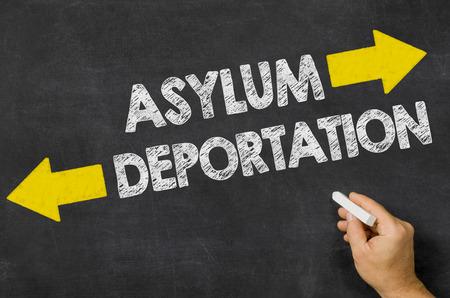 asylum: Asylum or Deportation