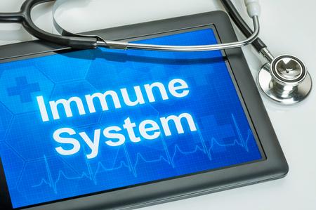 Tablette mit dem Text des Immunsystems auf dem Display Standard-Bild - 49221998