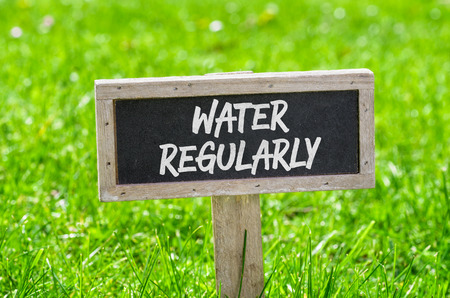 regularly: Sign on a green lawn - Water regularly Stock Photo