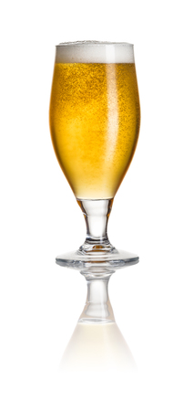 beer tulip: Beer in a tulip glass on a white background