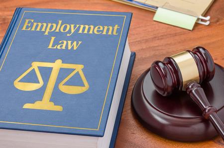 Právní kniha s kladivkem - zákon o zaměstnanosti