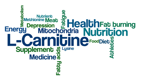 Word Cloud sur fond blanc - L-Carnitine Banque d'images - 90862344