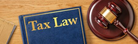A gavel with a law book - Tax Law 免版税图像