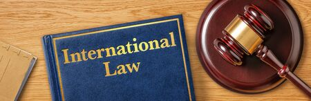A gavel with a law book - International Law