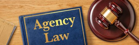 A gavel with a law book - Agency Law