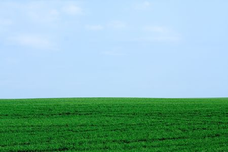 Peaceful landscape - natural green field with soft blue sky photo