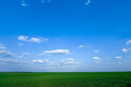grassplot: Peaceful landscape - natural green field with deep blue sky and beautiful clouds