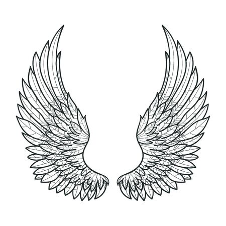 A pair of bird wings. drawn by hand. Black and white. For prints. posters, tattoos. Vector Vektorové ilustrace