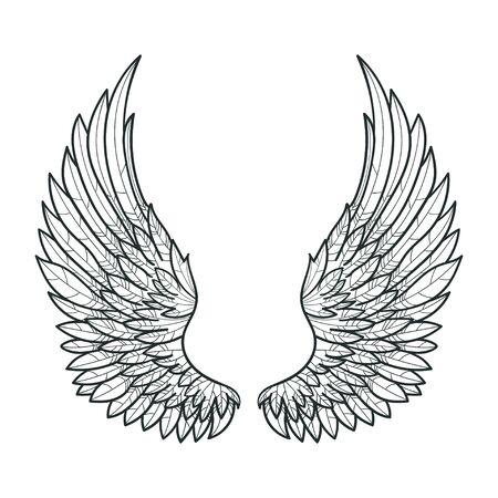 Un paio di ali di uccello. disegnato a mano. Bianco e nero. Per stampe. manifesti, tatuaggi. Vettore Vettoriali