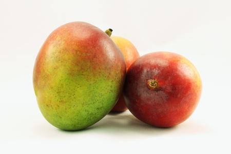 Group of three ripe unpeeled uncut sweet Haden mangoes