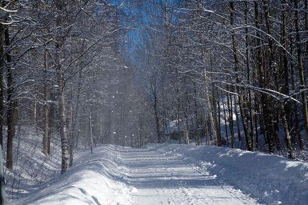 Snow falling on road in sunnyshining Stock Photo