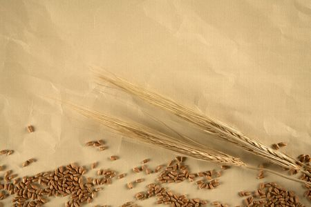 Grain on brown paper background Stock Photo - 8156892