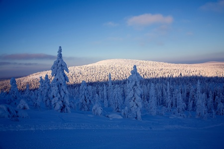 Blue moment on winter time in lapland photo