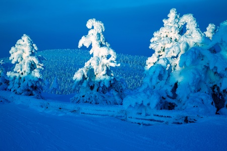 Blue moment on winter time in lapland Stock Photo