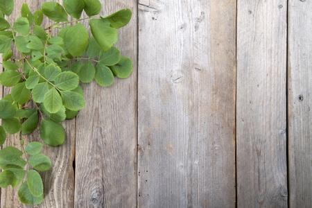 bladeren: Bladeren over houten background.With kopie ruimte