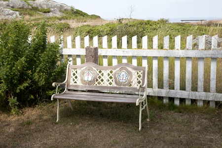 Empty wooden bench  on a sunny day  photo