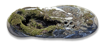 Covered with moss shoes on a white background Stock Photo