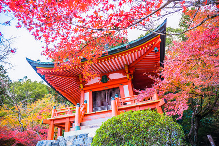 Kyoto, Japan - November 23, 2018: The Bentendo Hall is famous for the beautiful colored leaves in the fall when maples and ginkgos turn red and yellow. Editorial