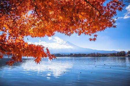 Colorful autumn season and Mount Fuji with maple leaves at lake Kawaguchiko in Japan Stockfoto