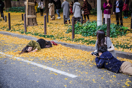 Tokyo, Japan - December 2, 2018: The women lying on the road to get a perfect shot of her with the Ginkgo leaves at Jingu Gaien. Redakční