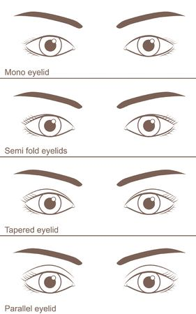 Single-edged eyelid and Double-fold eyelid 일러스트