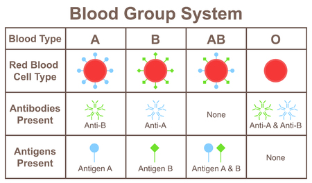 Blood group system 스톡 콘텐츠 - 113711939