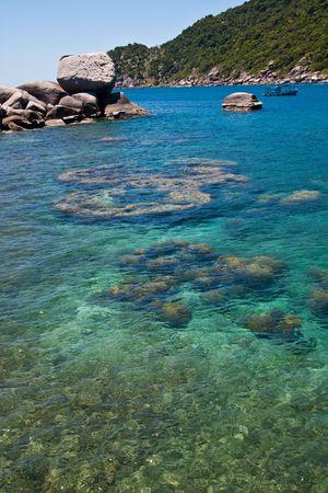 Rocks Under Sea Nang-Yuan at the south of Thailand
