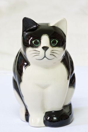 Cute Black and White Cat Model Stock Photo