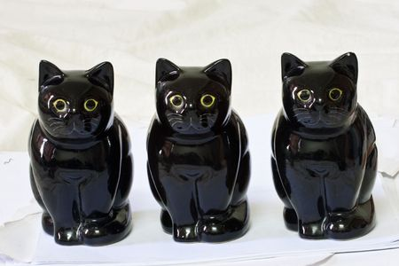 The Black cats model family