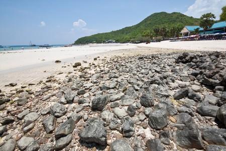 koh-lan rock beach, pattaya thailand