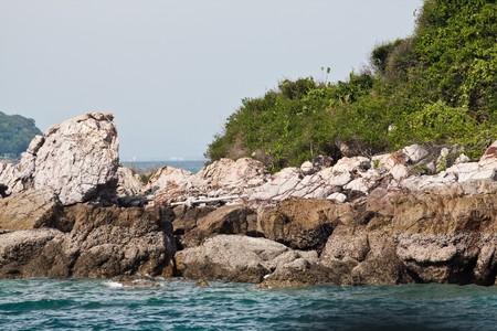 strong rock coast at koh-lan pattaya thailand