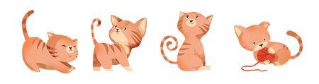 Cute kitten set