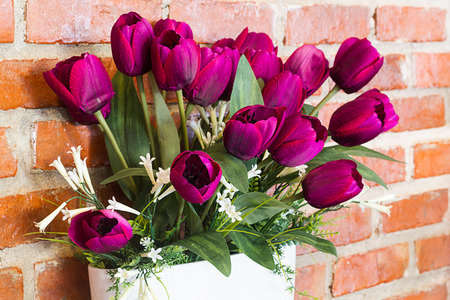 appointed: Purple tulip flowers in a white vase beautifully appointed front brick wall background.