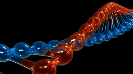 DNA strand close-up photo