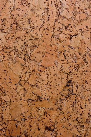 Texture of cork-board.