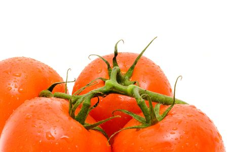 Red tomatos with green branch.Close-up and Isolated on white.