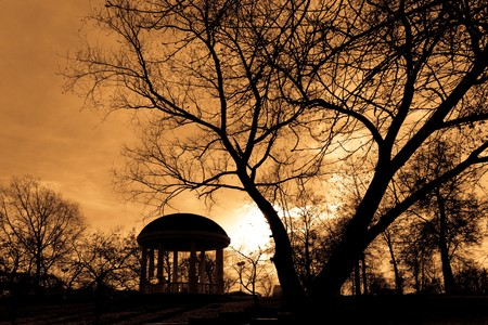 Sunset in the park. Silhouette of tree and pavilion.
