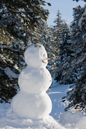 Snowman in the winter forest.
