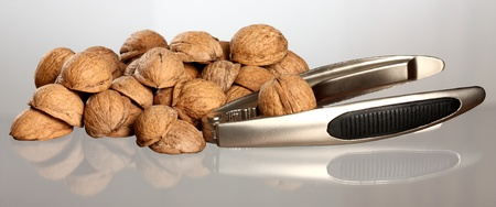 nutshell: Close-up of walnuts nutshell and nutcracker on neutral background with reflection